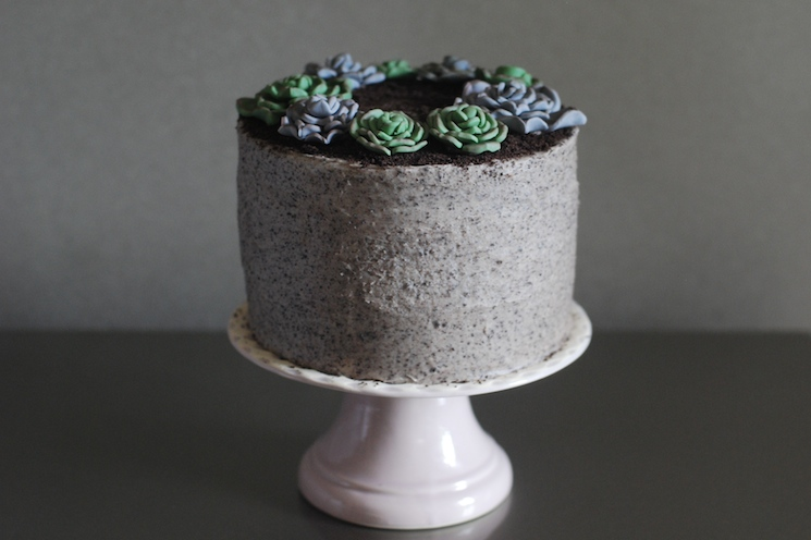 Succulent_cake_afternoon_crumbs_4