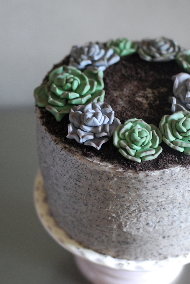 Succulent_cake_afternoon_crumbs_5