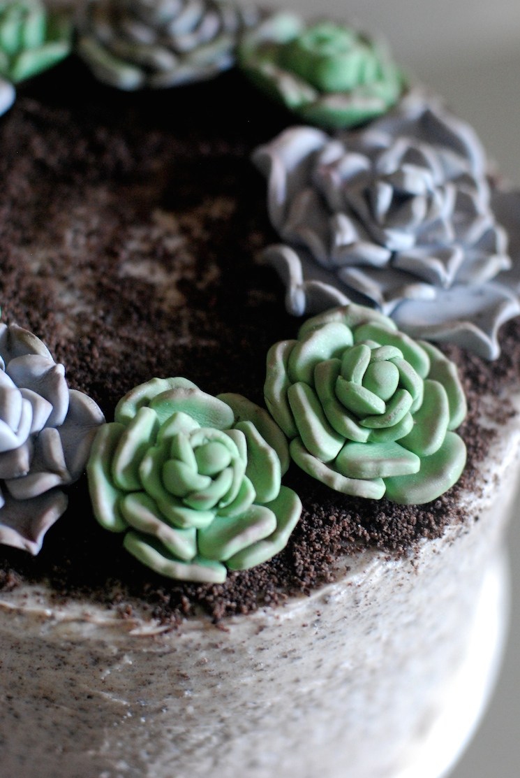 Succulent_cake_afternoon_crumbs_6