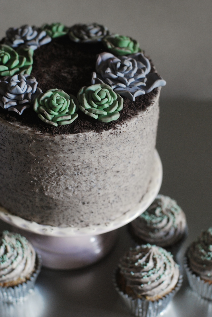 Succulent_cake_afternoon_crumbs_8